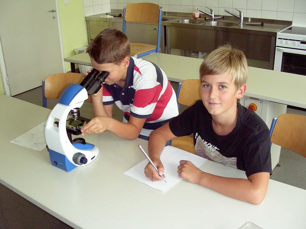 Mikroskopie im Realgymnasium | Reithmanngymnasium